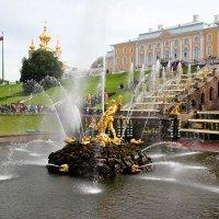 Петергоф фонтаны :: Мила Данковцева