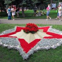 Вечный огонь(моему городу 299 лет) :: раиса Орловская