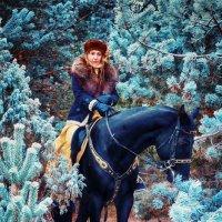 конная охота в Богдарне :: photographer Anna Voron