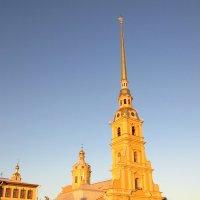 Петропавловский собор :: Екатерина Тайлер
