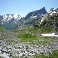 Долина Заячьи ушки :: Sage Ekchard