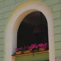 Питерская арка :: Павел Зюзин