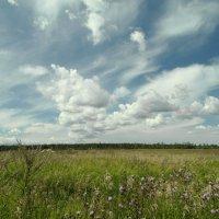 небо и земля... :: Михаил Жуковский