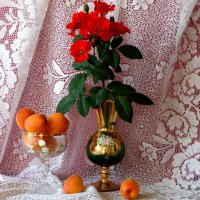 С абрикосами... :: Тамара (st.tamara)