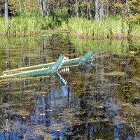 полесские крокодилы :: Александр Прокудин