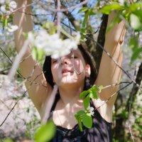 цветок :: Наталья Руссиян