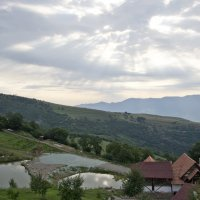 ... :: Satenik Smbatyan