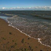 Прилив на Финском заливе... :: Владимир Питерский
