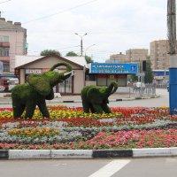 Украшение города. :: Борис Митрохин