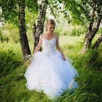Лесная Свадьба :: Венера Серба