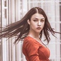 Портрет :: Михаил Абросимов