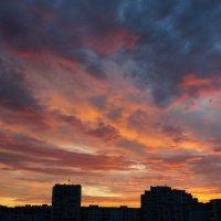 Рассвет. 06.08.15. :: Elena Izotova