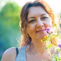 букет полевых цветов :: Тася Тыжфотографиня