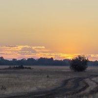 Перед восходом солнца..... :: Александр Малышев