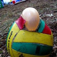 ПРОТЕСТ забитого мяча.. :: Александр Прокудин