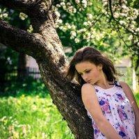 Яблуневий цвіт :: KATYA DAVLETOVA