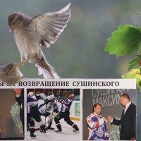 Необычная ситуация  №99 :: Вячеслав