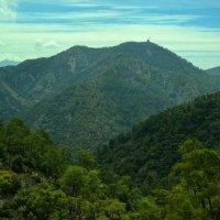 Горы Троодос :: Роберт Гресь