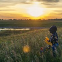 Мир детства :: Павел Бирюков