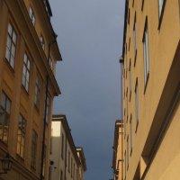 пасмурный день в Стокгольме :: Елена