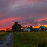 Путешестве по Дании. Деревня Люсбю. По дороге из леса. :: Марат Макс