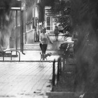 Прогулка с собакой :: Beloff Белов