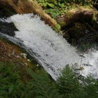 Бег воды... :: Алёна Савина