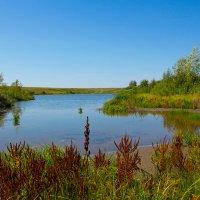 Озеро в поле :: Роман Царев