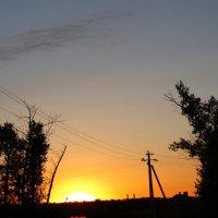 Август,на закате дня... :: Тамара (st.tamara)