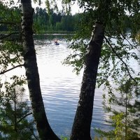 Вечер на реке Оредеж. :: Жанна Мааита