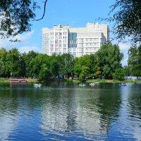 Городской парк. г.Уфа. Башкортостан :: Наталья Тагирова