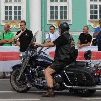 Дни Harley Davidson :: Вера Моисеева