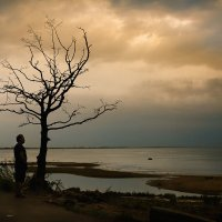 Старик и море :: Таня Тэффи