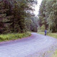 одинокий путник :: Lidiya Gaskarova