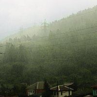 Летний дождь :: Ирина Трифонова