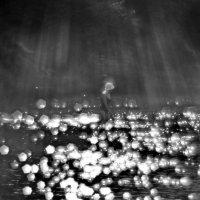 Солнечный дождь :: Владимир Безгрешнов
