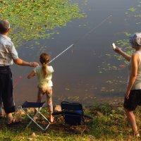 История одной рыбалки :: Андрей Лукьянов