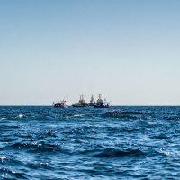 Морской бой :: Виктор Фин