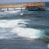 Египет море :: Александра Воскресенская