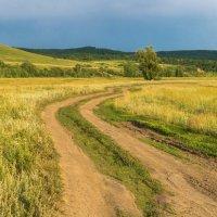 Извилистая дорога :: Любовь Потеряхина