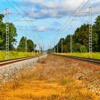 Далеко ли до Таллина? 30 минут :: Alx NOname