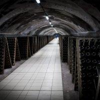 Завод шампанских вин Абрау-Дюрсо :: Ксения Мадумарова