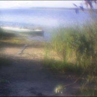 На Псковском озере :: galina bronnikova