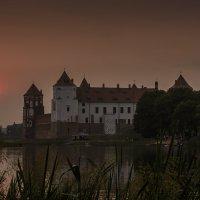Мирский замок :: Николай Климович