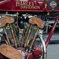 Harley-Days 2015 :: Николай Куле