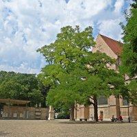 Перед кафедральным храмом епархии Аугсбурга. :: Galina Dzubina