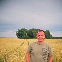 В поле :: Евгений Золотаев