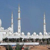 Большая мечеть Шейха Zayed :: Лев