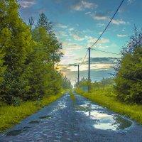 Дорога после дождя :: Антон Бердников
