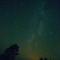 Наблюдая за звездопадом :: Елизавета Альбрехт